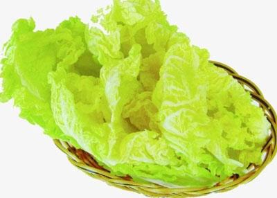 火锅素材-白菜